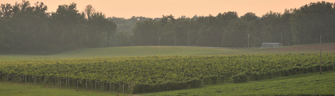 Indiana Uplands Wine Trail | French Lick West Baden ...